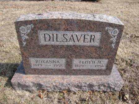 DILSAVER, FLOYD H. - Union County, Ohio | FLOYD H. DILSAVER - Ohio Gravestone Photos