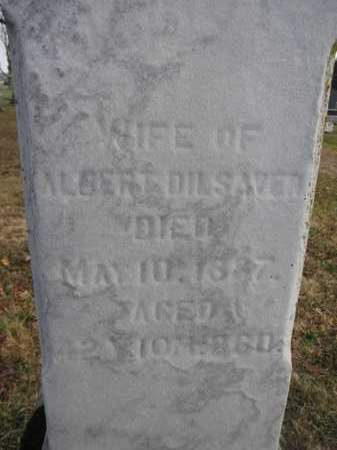 DILSAVER, MARTHA E. - Union County, Ohio | MARTHA E. DILSAVER - Ohio Gravestone Photos