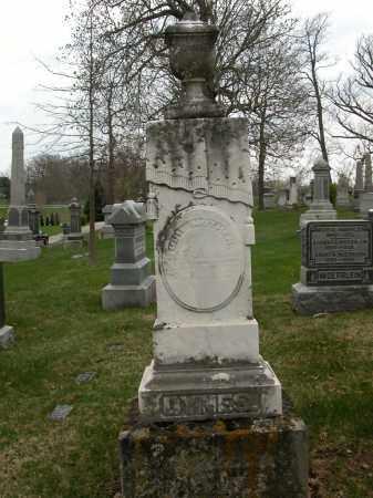 DYNES, UNKNOWN - Union County, Ohio | UNKNOWN DYNES - Ohio Gravestone Photos