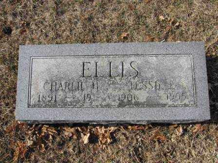 ELLIS, JESSIE L. - Union County, Ohio | JESSIE L. ELLIS - Ohio Gravestone Photos