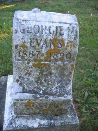 EVANS, GEORGE M. - Union County, Ohio | GEORGE M. EVANS - Ohio Gravestone Photos