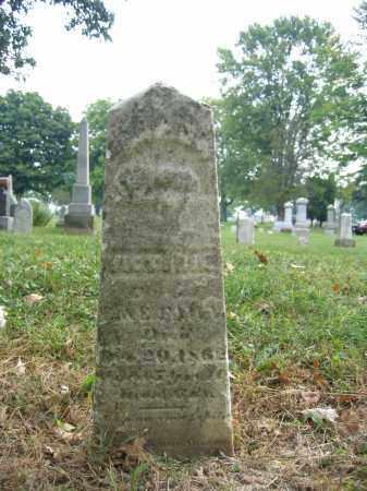 FAWN, VICTORIA - Union County, Ohio | VICTORIA FAWN - Ohio Gravestone Photos