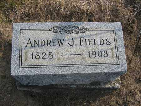 FIELDS, ANDREW J. - Union County, Ohio | ANDREW J. FIELDS - Ohio Gravestone Photos