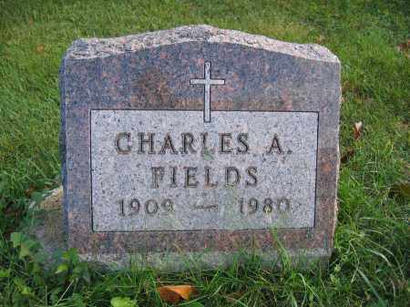 FIELDS, CHARLES A. - Union County, Ohio | CHARLES A. FIELDS - Ohio Gravestone Photos