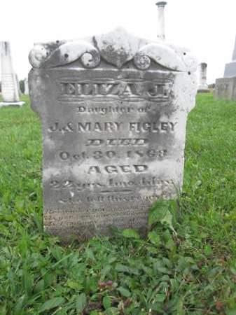 FIGLEY, ELIZA J. - Union County, Ohio | ELIZA J. FIGLEY - Ohio Gravestone Photos