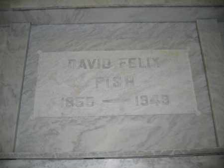 FISH, DAVID FELIX - Union County, Ohio | DAVID FELIX FISH - Ohio Gravestone Photos