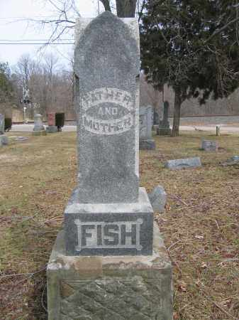 FISH, MARTHA ANN - Union County, Ohio | MARTHA ANN FISH - Ohio Gravestone Photos