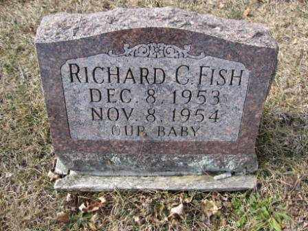 FISH, RICHARD C. - Union County, Ohio | RICHARD C. FISH - Ohio Gravestone Photos