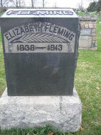 FLEMING, ELIZABETH - Union County, Ohio | ELIZABETH FLEMING - Ohio Gravestone Photos
