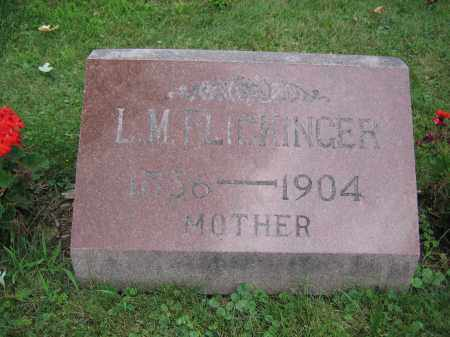 FLICKINGER, L.M. - Union County, Ohio | L.M. FLICKINGER - Ohio Gravestone Photos