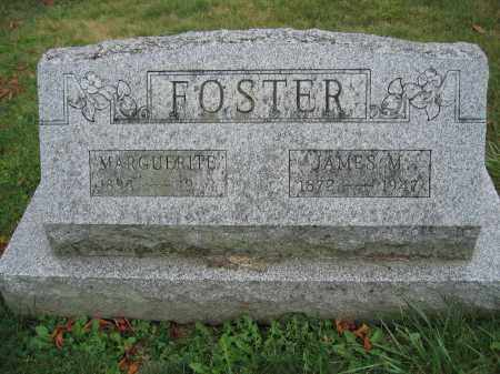 FOSTER, JAMES M. - Union County, Ohio | JAMES M. FOSTER - Ohio Gravestone Photos