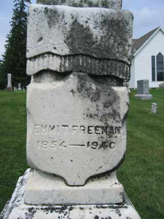 FREEMAN, EMMIT - Union County, Ohio | EMMIT FREEMAN - Ohio Gravestone Photos