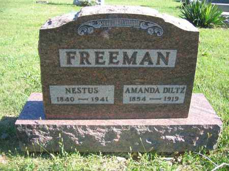 FREEMAN, NESTUS - Union County, Ohio | NESTUS FREEMAN - Ohio Gravestone Photos