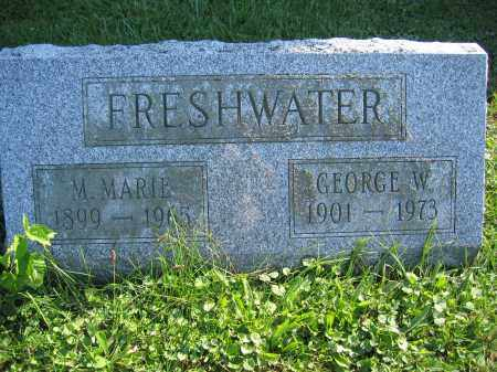 FRESHWATER, GEORGE W. - Union County, Ohio | GEORGE W. FRESHWATER - Ohio Gravestone Photos