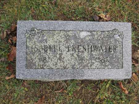 FRESHWATER, ISABELL - Union County, Ohio | ISABELL FRESHWATER - Ohio Gravestone Photos