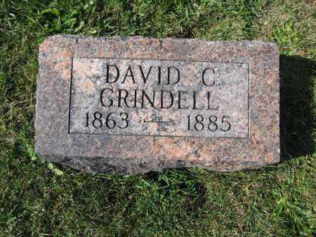 GRINDELL, DAVID C. - Union County, Ohio | DAVID C. GRINDELL - Ohio Gravestone Photos