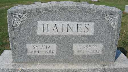 HAINES, CASPER - Union County, Ohio | CASPER HAINES - Ohio Gravestone Photos