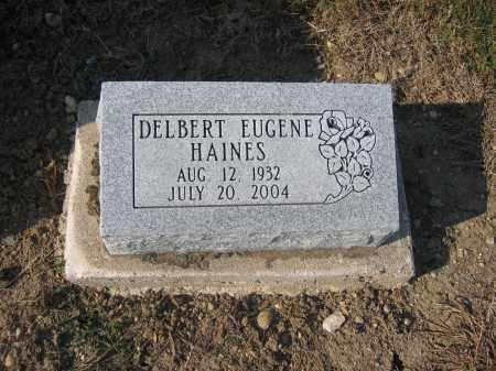 HAINES, DELBERT EUGENE - Union County, Ohio | DELBERT EUGENE HAINES - Ohio Gravestone Photos