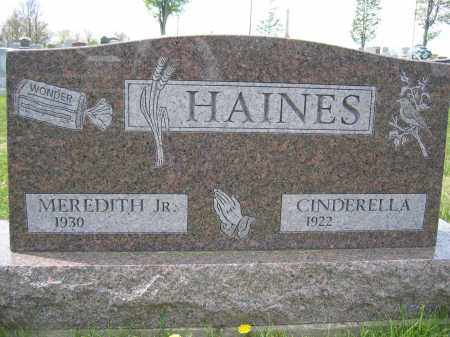 HAINES, CINDERELLA - Union County, Ohio | CINDERELLA HAINES - Ohio Gravestone Photos