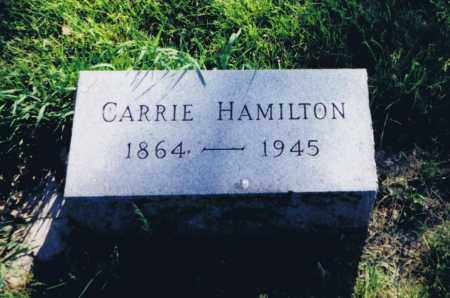HAMILTON, CARRIE - Union County, Ohio | CARRIE HAMILTON - Ohio Gravestone Photos