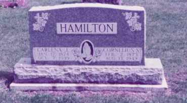 HAMILTON, CARLENA JANE - Union County, Ohio | CARLENA JANE HAMILTON - Ohio Gravestone Photos