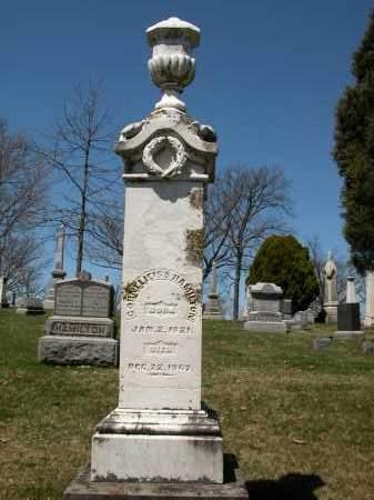 HAMILTON, CORNELLEIS S. - Union County, Ohio | CORNELLEIS S. HAMILTON - Ohio Gravestone Photos