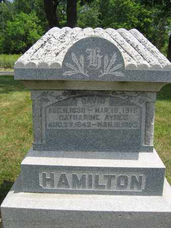 HAMILTON, DAVID - Union County, Ohio | DAVID HAMILTON - Ohio Gravestone Photos