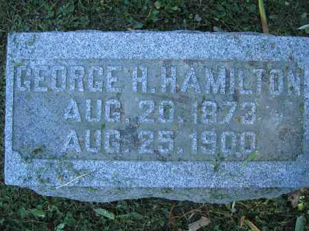 HAMILTON, GEORGE H. - Union County, Ohio | GEORGE H. HAMILTON - Ohio Gravestone Photos