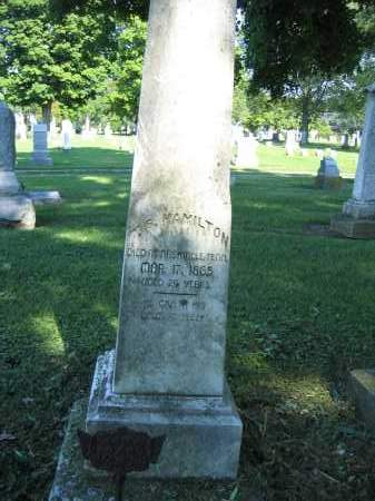 HAMILTON, T.B. - Union County, Ohio   T.B. HAMILTON - Ohio Gravestone Photos