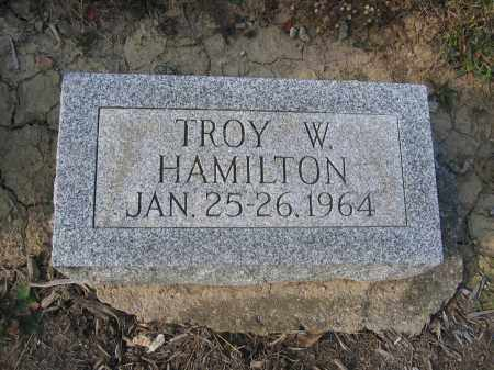 HAMILTON, TROY W. - Union County, Ohio | TROY W. HAMILTON - Ohio Gravestone Photos