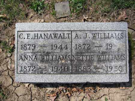 WILLIAMS, ANNA - Union County, Ohio | ANNA WILLIAMS - Ohio Gravestone Photos