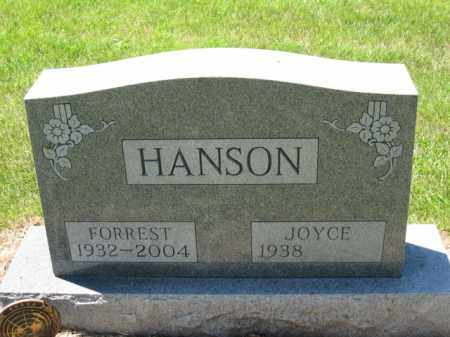 HANSON, JOYCE - Union County, Ohio | JOYCE HANSON - Ohio Gravestone Photos