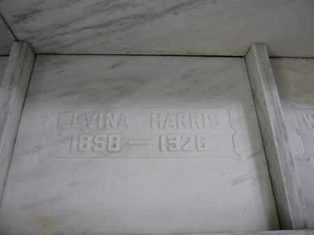 HARRIS, ELVINA BURNS - Union County, Ohio | ELVINA BURNS HARRIS - Ohio Gravestone Photos