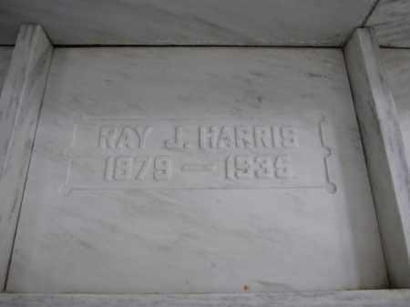 HARRIS, RAY J. - Union County, Ohio | RAY J. HARRIS - Ohio Gravestone Photos