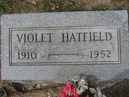 HATFIELD, VIOLET - Union County, Ohio | VIOLET HATFIELD - Ohio Gravestone Photos