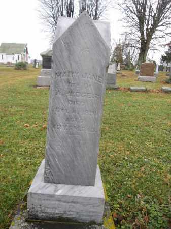HEDGES, MARY JANE - Union County, Ohio | MARY JANE HEDGES - Ohio Gravestone Photos