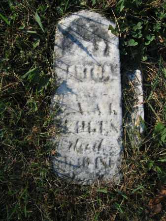 HEDGES, MARTHA A. - Union County, Ohio | MARTHA A. HEDGES - Ohio Gravestone Photos