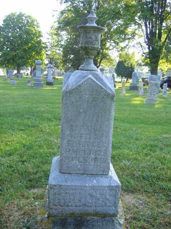 HEDGES, SARAH E. - Union County, Ohio | SARAH E. HEDGES - Ohio Gravestone Photos