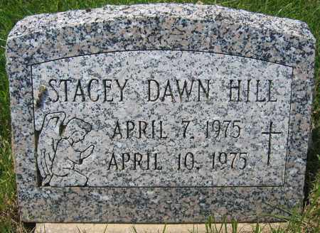 HILL, STACEY DAWN - Union County, Ohio | STACEY DAWN HILL - Ohio Gravestone Photos