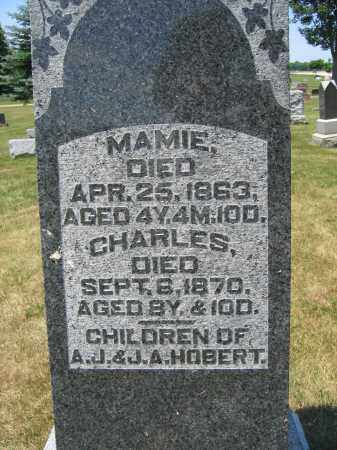 HOBERT, MAMIE - Union County, Ohio | MAMIE HOBERT - Ohio Gravestone Photos