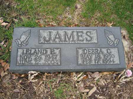 JAMES, DEBRA C. - Union County, Ohio | DEBRA C. JAMES - Ohio Gravestone Photos