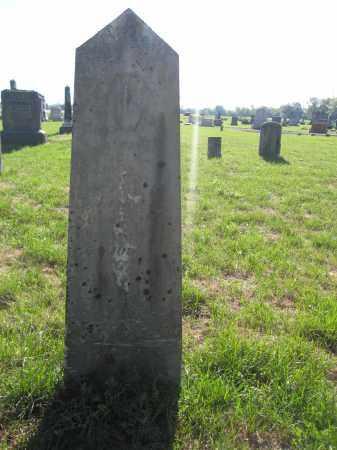 JENKINS, JOHN - Union County, Ohio | JOHN JENKINS - Ohio Gravestone Photos