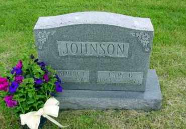 JOHNSON, CARL - Union County, Ohio | CARL JOHNSON - Ohio Gravestone Photos
