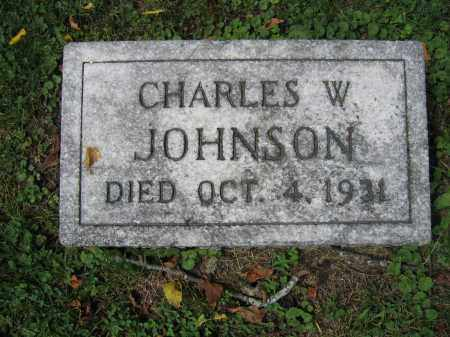 JOHNSON, CHARLES W. - Union County, Ohio | CHARLES W. JOHNSON - Ohio Gravestone Photos