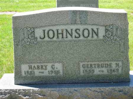 JOHNSON, HARRY C. - Union County, Ohio | HARRY C. JOHNSON - Ohio Gravestone Photos