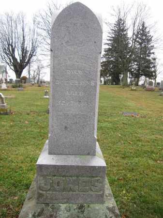 JONES, JOHN W. - Union County, Ohio | JOHN W. JONES - Ohio Gravestone Photos