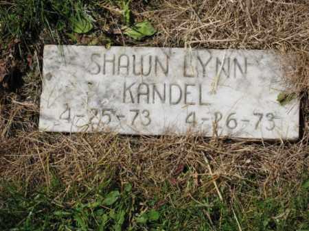 KANDEL, SHAWN LYNN - Union County, Ohio | SHAWN LYNN KANDEL - Ohio Gravestone Photos