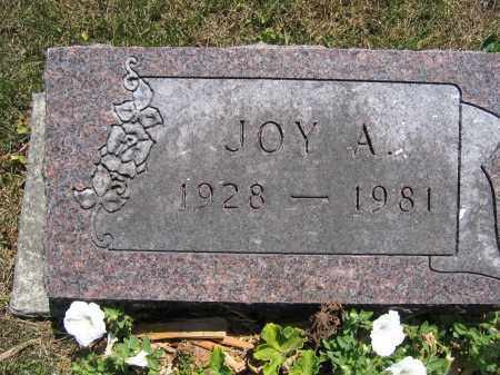 KERNS, JOY A. - Union County, Ohio | JOY A. KERNS - Ohio Gravestone Photos