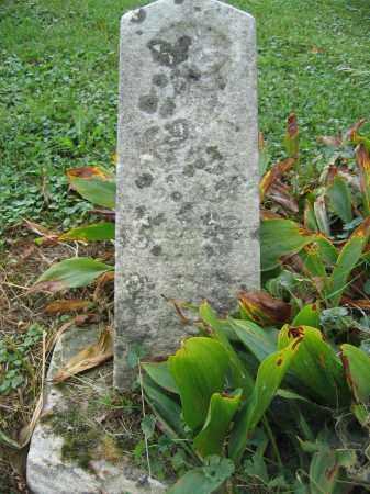 KINNEY, JAMES - Union County, Ohio   JAMES KINNEY - Ohio Gravestone Photos