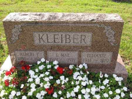 KLEIBER, ELLOUISE - Union County, Ohio | ELLOUISE KLEIBER - Ohio Gravestone Photos